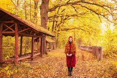 Redhead woman in red coat on picturesque autumn background. Picturesque september landscape. Girl on background of forest with ora. Nge autumn leaves. Leaves stock photos
