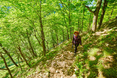Redhead woman walking on a mountain trail Royalty Free Stock Photography