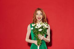 Redhead young shocked girl Stock Photography