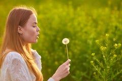 Redheaded предназначенная для подростков девушка дуя на одуванчиках Стоковая Фотография