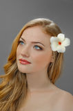 Redheaded picture of beauty Royalty Free Stock Image