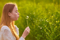 Redheaded teen girl blowing on dandelions. In spring time Royalty Free Stock Image