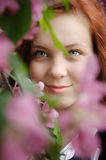 Redheaded young girl. A redheaded young girl is in a spring garden Royalty Free Stock Photo