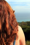Back of a red-haired woman's head. Stock Images