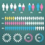 Redigerbar folkinfographics för rapporter och presentationen, procent, grafer, cirkeldiagram Manlig och kvinnligInfographic mall  royaltyfri illustrationer