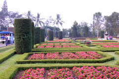 Redish green garden. A green garden spotted with red flowers in Taman Bunga, Puncak, West Java, Indonesia Stock Photography