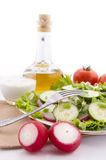 Redish salad ingredients Royalty Free Stock Image