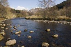 średniogórza szkockich Fotografia Royalty Free