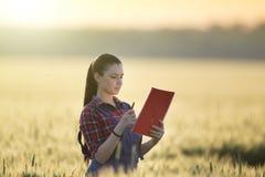 Średniorolna dziewczyna w pszenicznym polu Zdjęcie Royalty Free