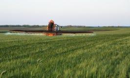Średniorolnego opryskiwania pszeniczny pole przy wiosna sezonem Zdjęcie Stock