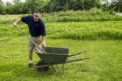 Średniorolny Miesza kompost Obrazy Royalty Free