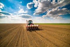 Średniorolny obsiewanie, wysiewne uprawy przy polem Obrazy Royalty Free