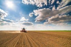 Średniorolny obsiewanie, wysiewne uprawy przy polem Obrazy Stock