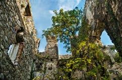 Średniowieczne kasztel ruiny Obraz Stock
