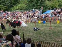2016 54 Średniowieczny festiwal Obraz Royalty Free