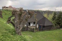 Średniowieczny gospodarstwo rolne z kasztelem w tle Obraz Royalty Free