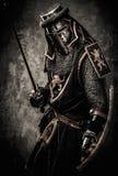 Średniowieczny rycerz w pełnej zbroi Obrazy Royalty Free