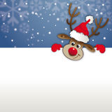 Rednosed reindeer copy space, Greetingcard, voucher Royalty Free Stock Photos