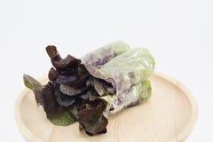 RedOak- hydroponika warzywo odizolowywa na białym tle Zdjęcie Royalty Free