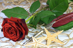 Redrose och en quill royaltyfri foto