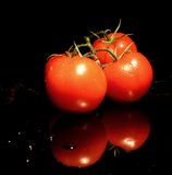 The Reds. Three tomatoes on a shiny black background Stock Photos