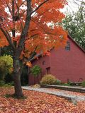 Reds of Autumn Stock Photo