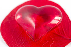 Reds heart on red foliole Stock Photography