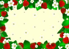 Reds strawberry frame. Floral frame with strawberry illustration vector illustration