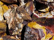 Reds and Yellows of Rainbow Petrified Wood. Image of the surface textures of pieces of Rainbow Petrified Wood. Taken near Canon City Colorado. Liked how the Stock Photography