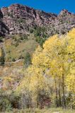 Redstone in autumn. Fall Color in Redstone, Colorado Stock Photo