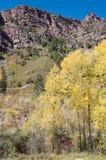 Redstone in de herfst stock foto