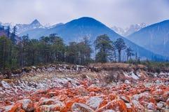 Redstone onder de ijsberg Stock Foto