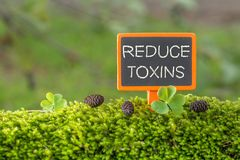 Reduce toxins text on small blackboard stock images