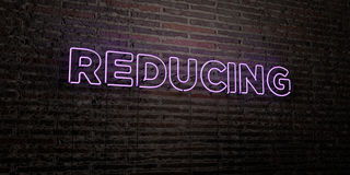 REDUCING -Realistic Neon Sign on Brick Wall background - 3D rendered royalty free stock image Royalty Free Stock Photography