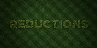 REDUCTIONS - fresh Grass letters with flowers and dandelions - 3D rendered royalty free stock image. Can be used for online banner ads and direct mailers vector illustration