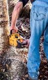 Reduzindo uma árvore Fotografia de Stock
