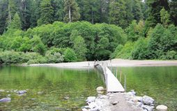 Redwood Forest river with bridge. royalty free stock photo