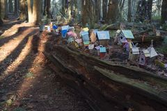 Painted birdhouses in Redwood Park in South Surrey. Painted birdhouses on a log in Fairy Tale Forest in Redwood Park, Surrey created by children of all ages Stock Image