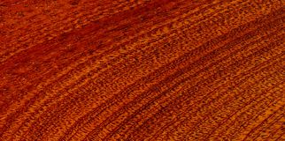 Redwood texture Stock Photography