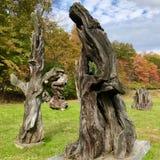 Redwoodträddrivvedskulpturer som kommas med från nordliga Kalifornien stränder till de Catskill bergen arkivbild