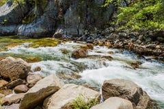 Redwoodträdliten vik, huvudväg 180, gör till kung kanjonnationalparken, Californ Fotografering för Bildbyråer