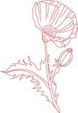 Redwork Poppy Royalty Free Stock Photo
