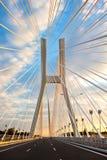 redzin моста Стоковое Изображение