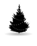 Ree, Christmas fir tree, black silhouette  on white. Stock Images