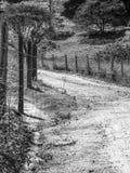 Ree och staket på bygden arkivfoton