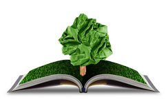 Ree paper growing from book with grass on white background. Stock Photo