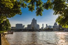 Ree verzweigt sich und verlässt Rahmen die Morgensonnenaufgangansicht von Bangko Lizenzfreie Stockfotos