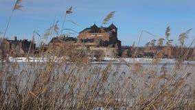 Reed на предпосылке древней крепости Hameenlinna, Финляндия сток-видео