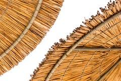 Reed Beach Umbrellas Close Up Arkivbilder