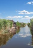 Reed Belt,Lake Neusiedl,Burgenland,Austria Royalty Free Stock Images